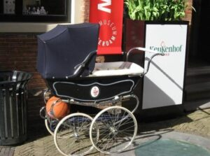 bassinets with stroller combo